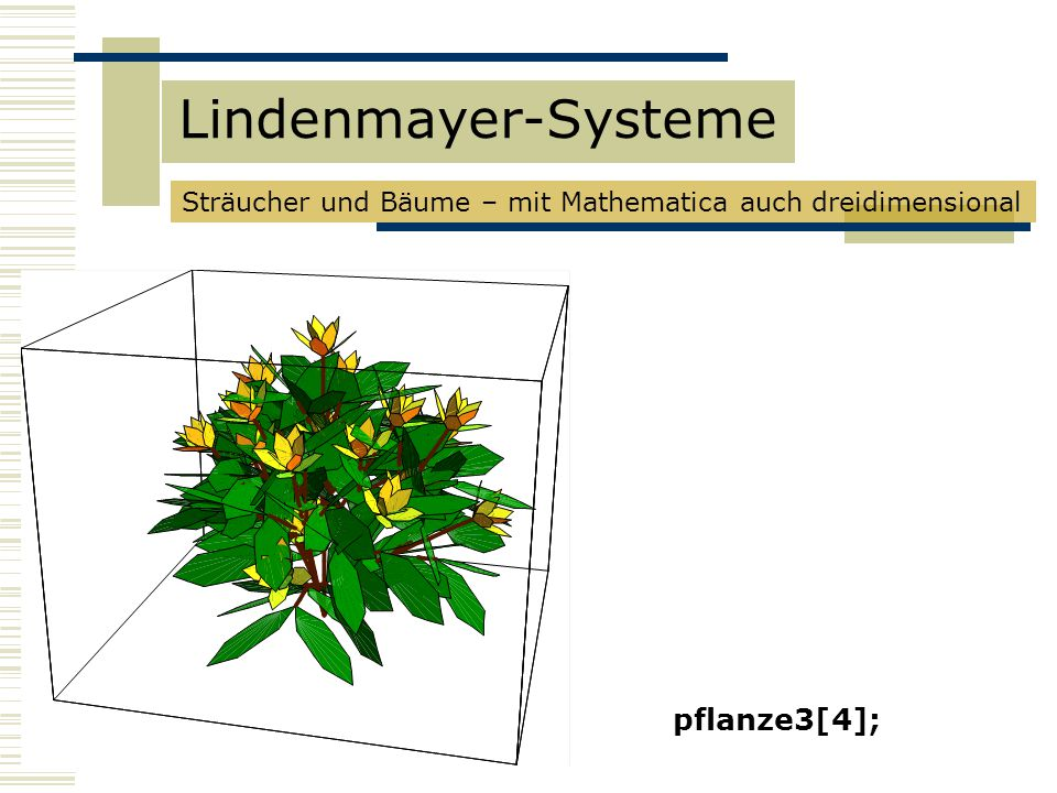 Lindenmayer-Systeme pflanze3[4];